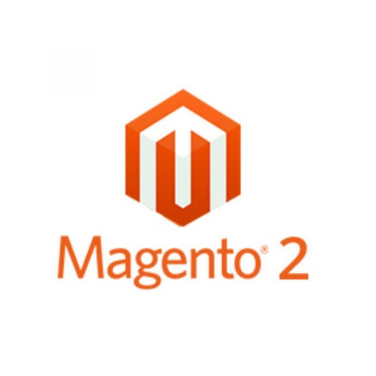Vanaf €450,00 ex btw goedkoop een Magento 2 webwinkel laten mak