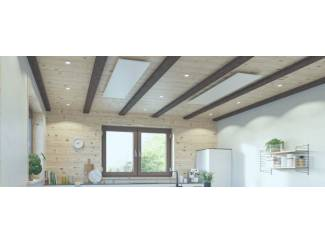 Verwarming en Radiatoren infraroodpaneel Exclusif W&F Shop 450W met hamerslag coating.