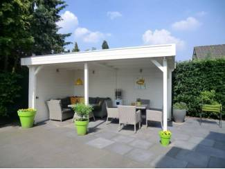 Tuinhuisjes, Blokhutten en Kassen Tuinhuis-Blokhut-paviljoen P3051: 500x298x243 cm