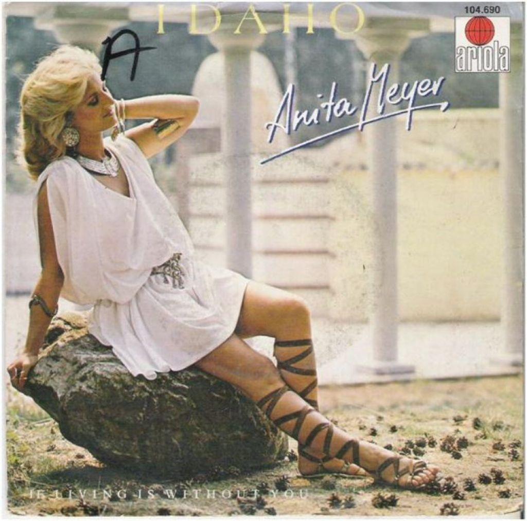 "ANITA MEYER: ""Idaho"""