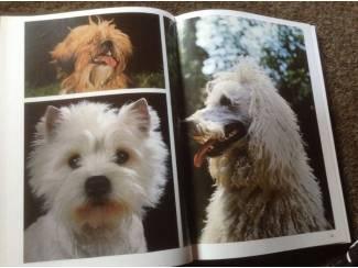 Een Boek van honden en een boek van katten ,lieve huisdieren