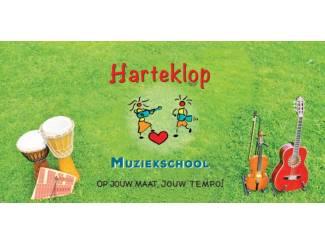 Gezocht: Muziekleraar in alternatieve muziekschool